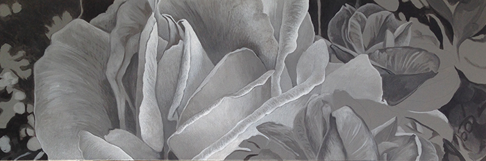 Grisaille2TN